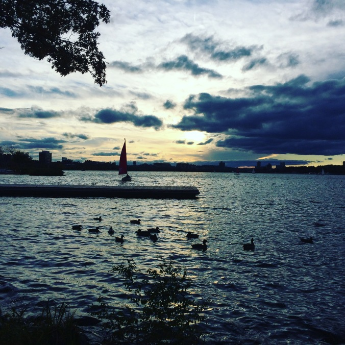 #seenonmyrun along the Charles River Esplanade